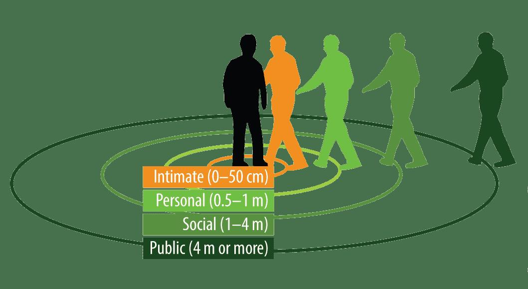 Проксемика: интимная, персональная, социальная и публичная зоны